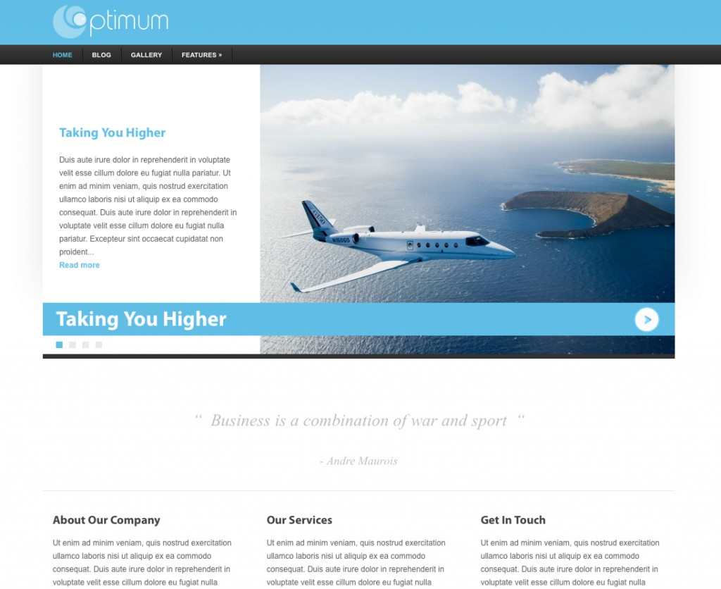 business wordpress theme optimum